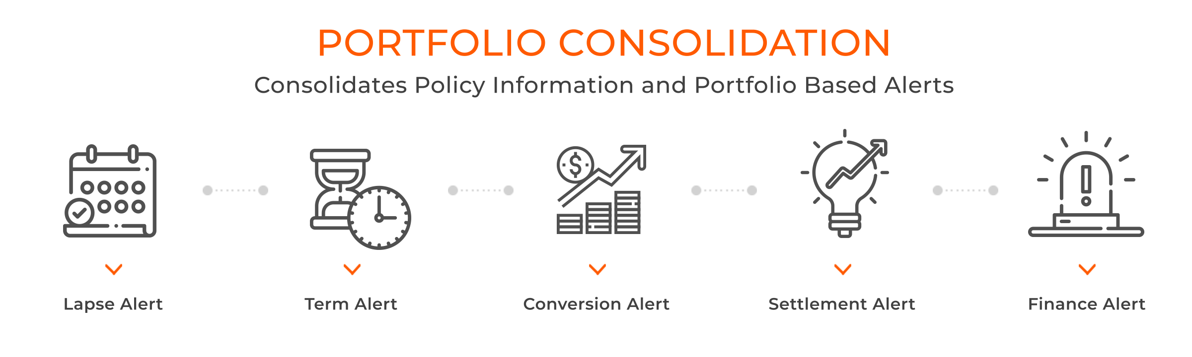 Portfolio Consolidation